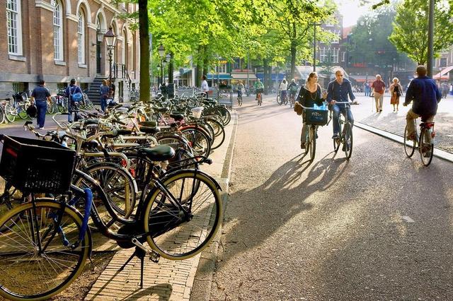 Sillonner le Pays-Bas à vélo