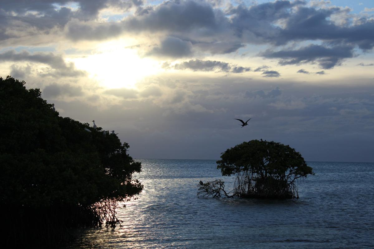 Faire une excursion en Guadeloupe