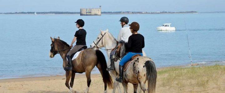 Profitez pleinement de la Charente-Maritime